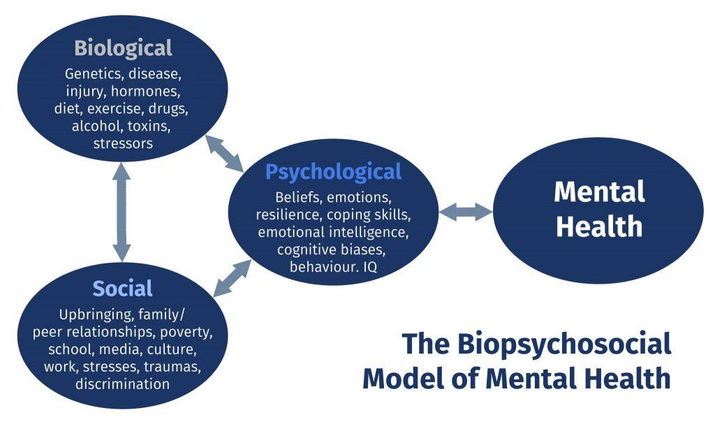 biopsychosocial-model